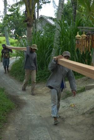 Bali Rice Walk-16