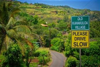 2-20 - Kalakuloa road