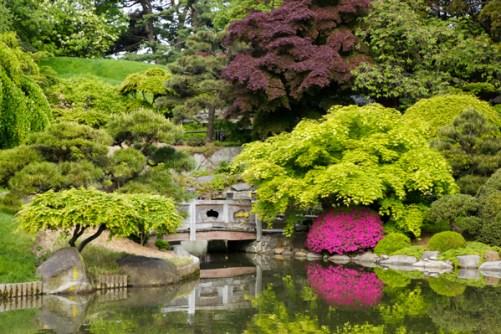 3-24 - brooklyn-botanical-garden