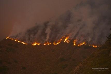 8-7 - Sobranes Fire