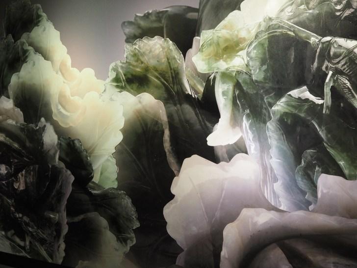 壁にも白菜