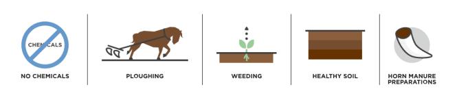how biodymanic farming impact terroir