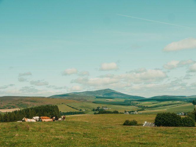 Glenlivet countryside