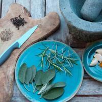 Sharpening ceramic knives