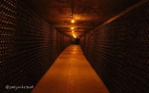 In the caves at Moët and Chandon