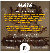 METE ONTURK.ORG