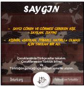 SAYGIN - ONTURK.ORG
