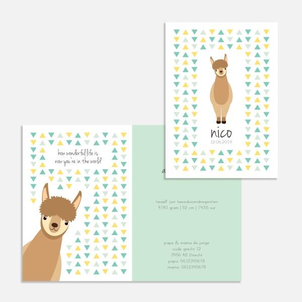Dit geboortekaartje met alpaca/lama is een vrolijk en lief kaartje.
