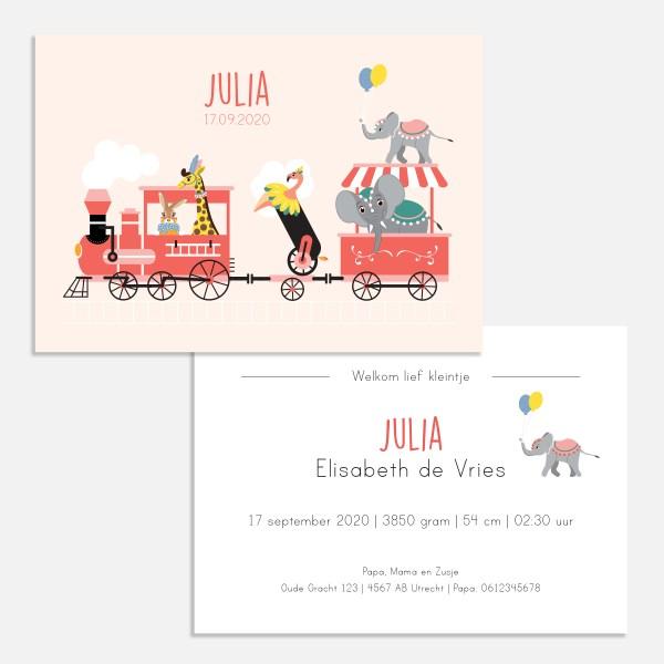 Geboortekaartje circus, geboortekaartje trein, geboortekaartje 10x15