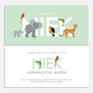 geboortekaartje jungle dieren mintgroen jongen 10x21cm