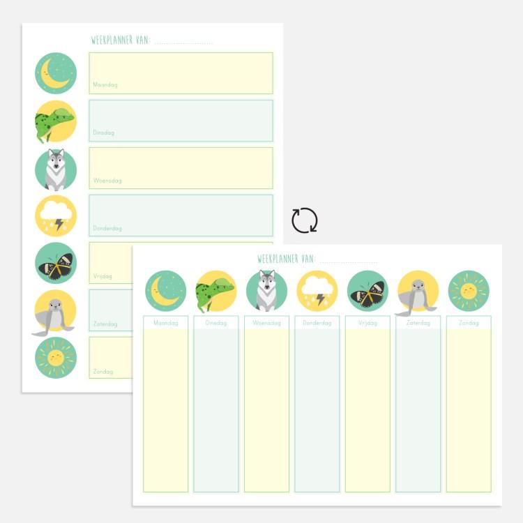 weekplanner turquoise kind ontwerp door lindy