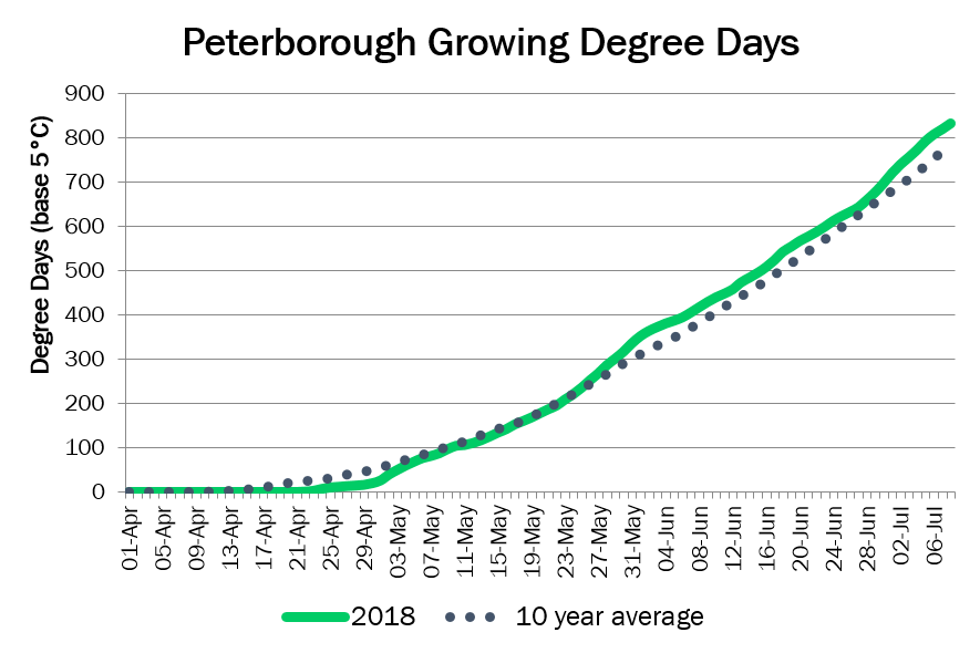 PeterboroughDD July8