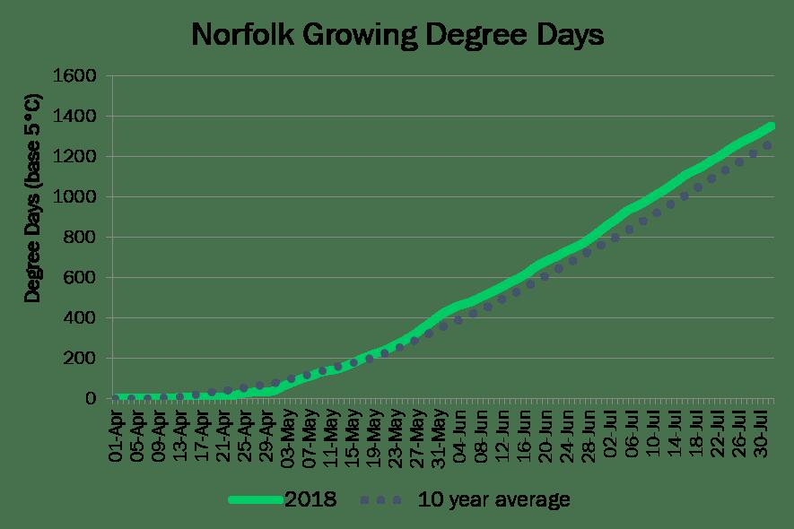 NorfolkDD August1