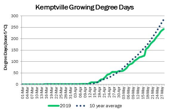KemptvilleDDMay29