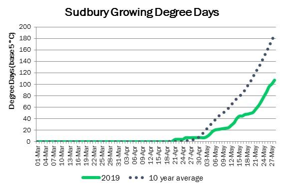 SudburyDDMay29