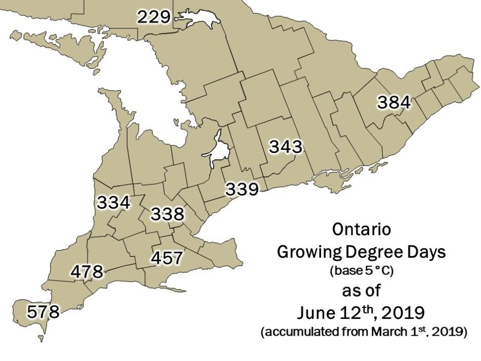 Ontario DD Map - June 13