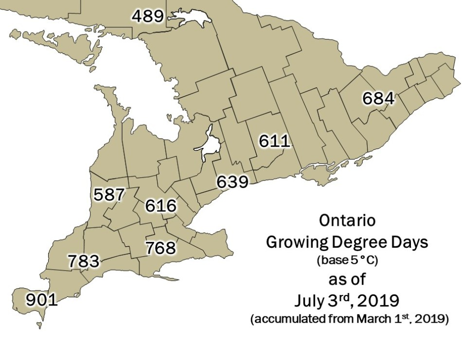 Ontario DD Map - July 4