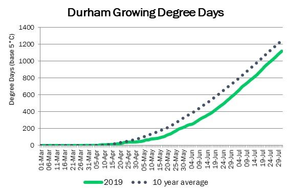 DurhamDDAugust1