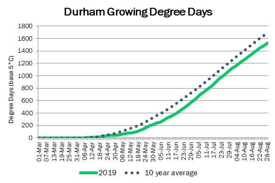 DurhamDDAugust29