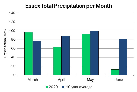 essex_precip_jun11