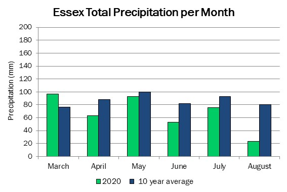 essex_precip_aug20