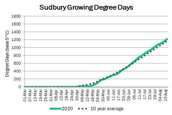 sudbury_GDD_aug13