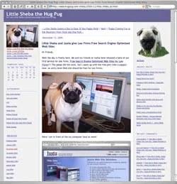 Sheba the Hug Pug's main blog