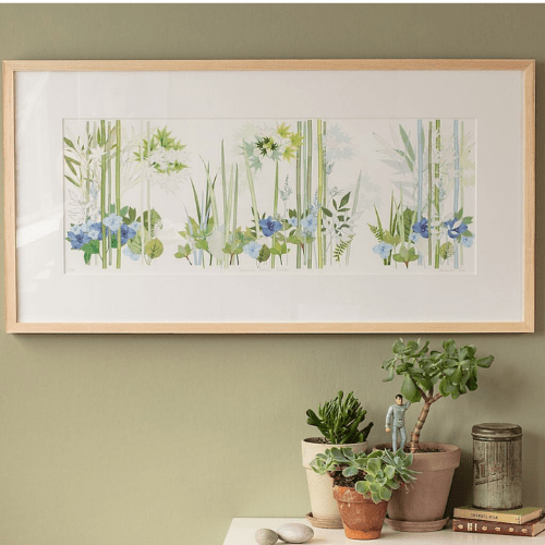 Amanda Ross Botanical Artist