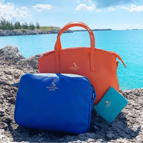 Luxury Affordable Leather handbags and accessories