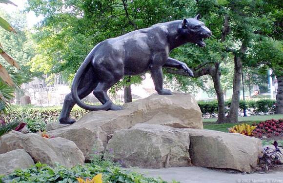 Panther at WPU