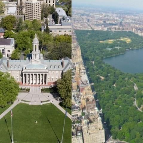 Friends Central Park