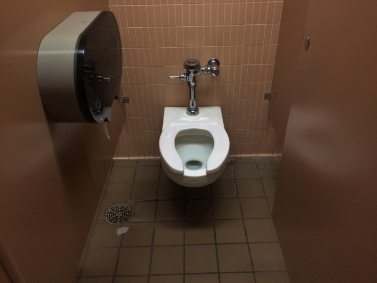 Library Toilet