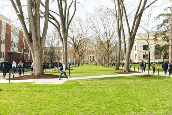While some trees are still bare, the green grass and the warm air makes walking to class enjoyable again.