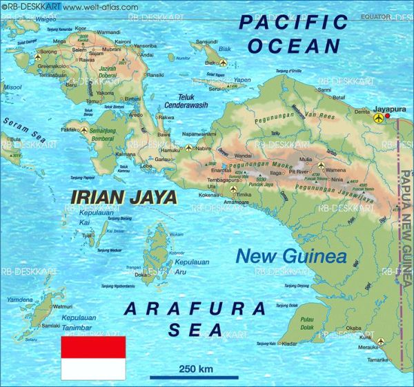 Papua - pinterest.com