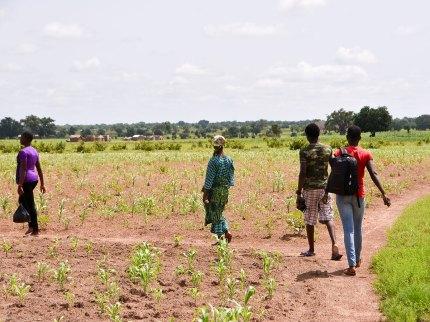 landbouw en inkomen