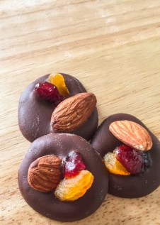 Chocolate with Toasted Almond, Dried Apricot and Cranberry