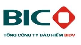BIC - Phần mềm KPI