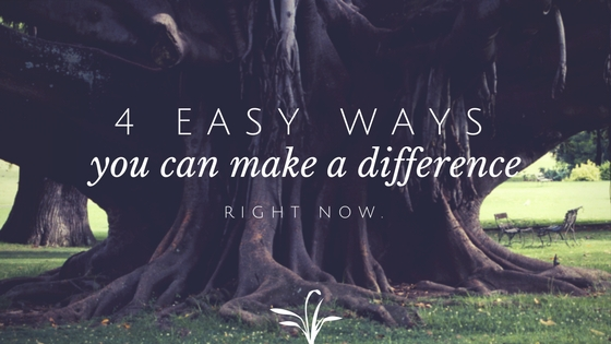 4 easy ways you can make a difference