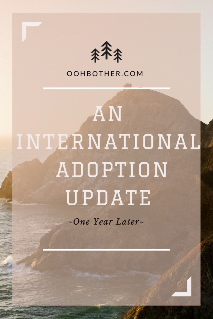 How to begin the adoption process