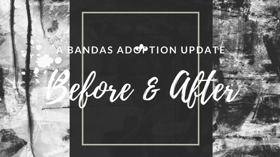 Before and After - A Bandas Adoption Update