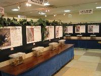 昆虫イベント 江釣子ショッピングセンターパル03