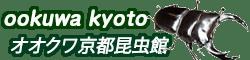 クワガタ | オオクワ京都昆虫館 オオクワガタ カブトムシ 昆虫専門店