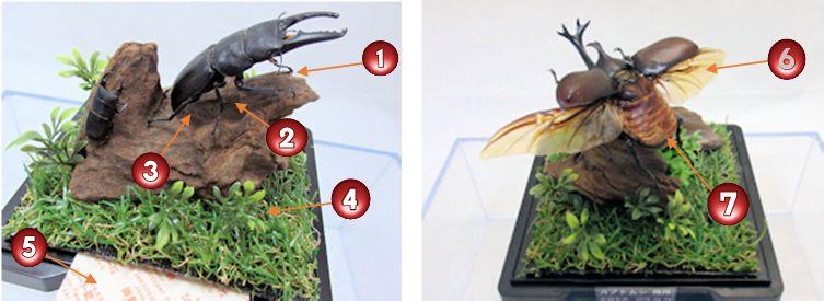 ノウハウ・技術を取り入れたジオラマ標本の製作方法