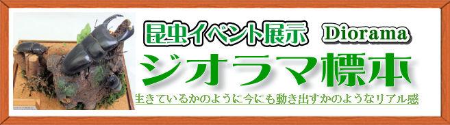 ジオラマ標本 商標登録申請