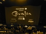 August: I was dazzled by Cavalia, a touring show displaying horses and performing arts,