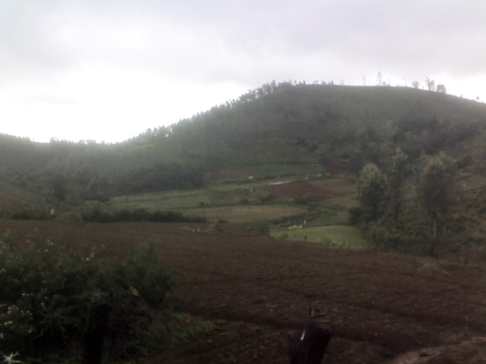 Land available for sale 25kms from ooty (3/6)
