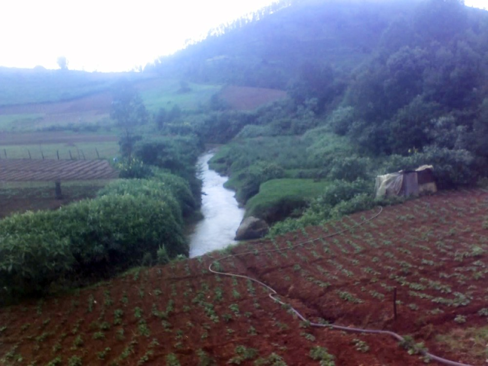 Land available for sale 25kms from ooty (4/6)