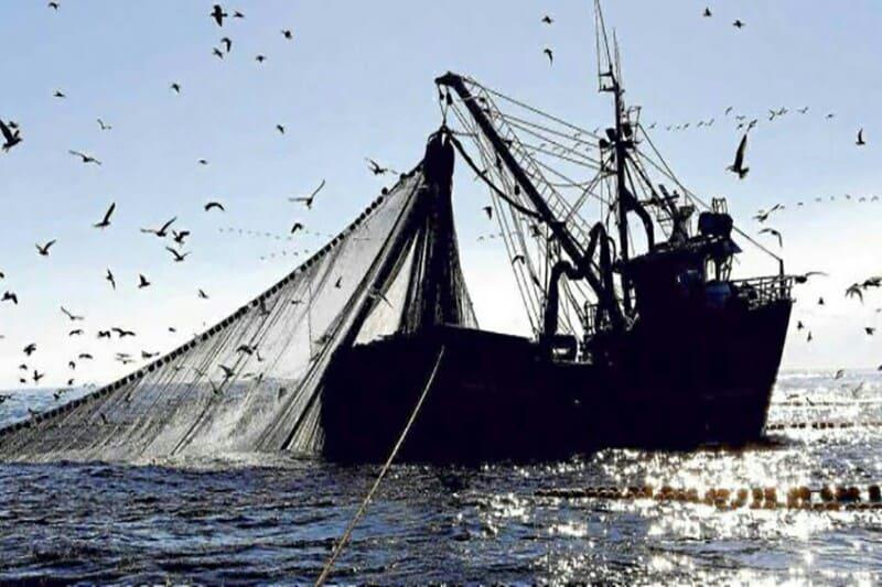 Navio pesqueiro apreendido com 800 toneladas de carapau