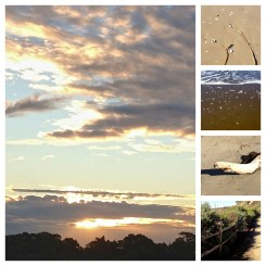 Bacara Beachscapes, January 2012