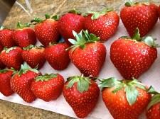 Strawberry Melange